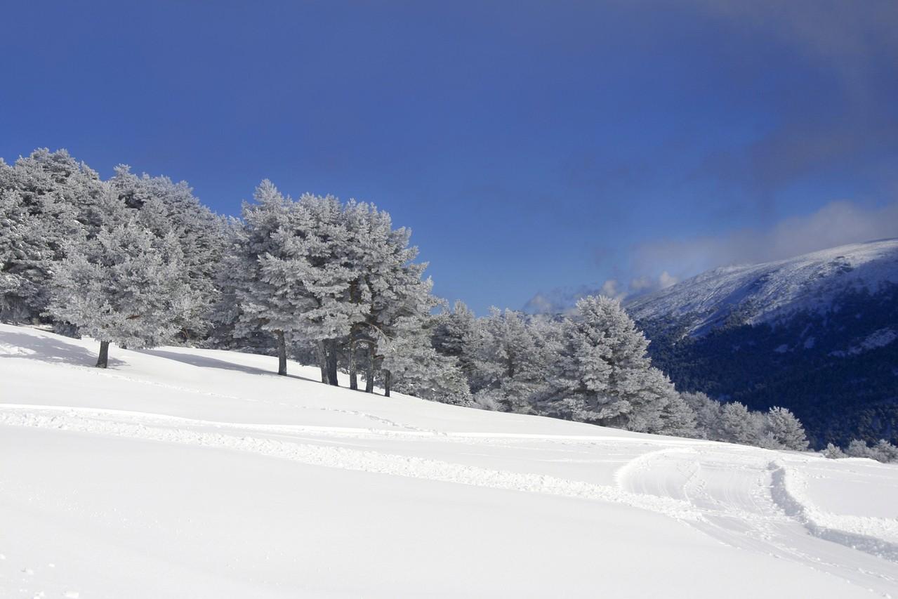 a_moze_tak_zimowy_sport_na_lodzie.jpg